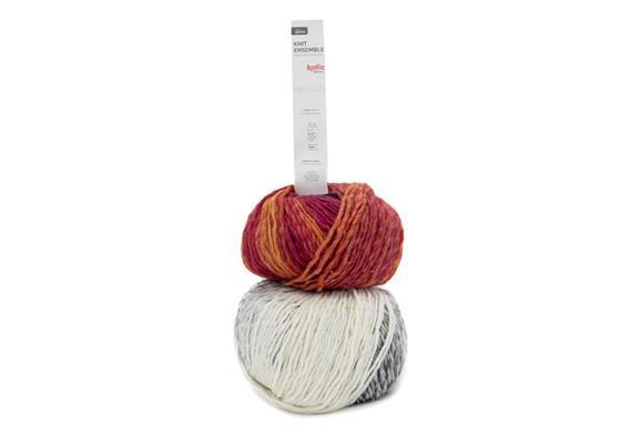 Knit Ensemble 403 250g
